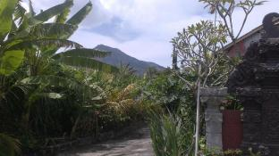 Volcano 2 guesthouse (Pet-friendly)
