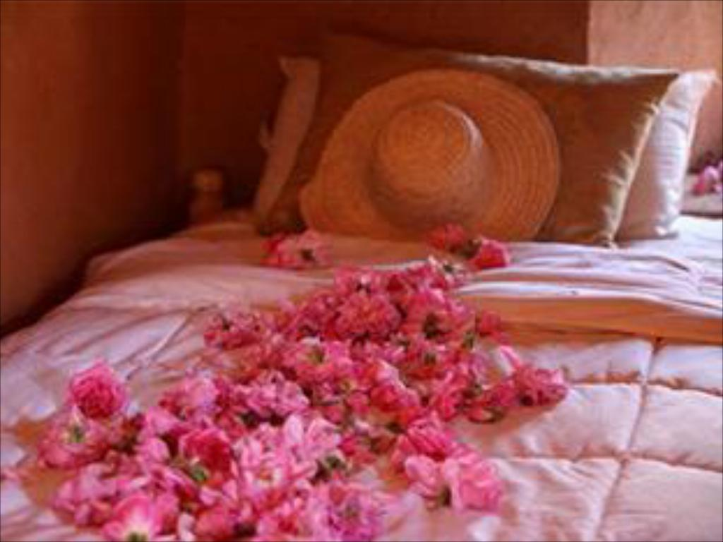 Ver as 23 fotos Kasbah Des Roses Guesthouse