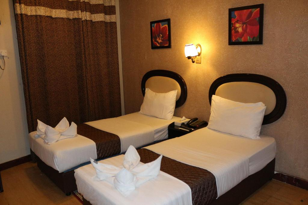 Double or Twin Room - Room plan Grand Sina Hotel