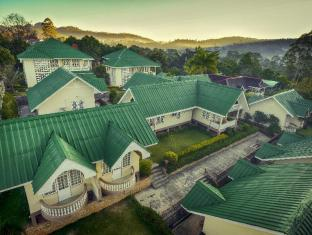 Pine Hill Resort