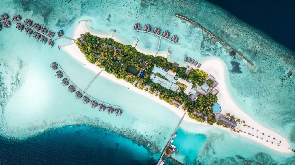 More about Veligandu Island Resort & Spa