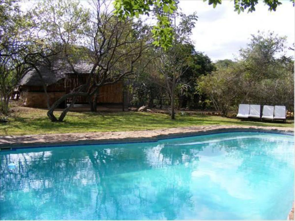 Swimming pool Shayamoya Tiger Fishing and Game Lodge
