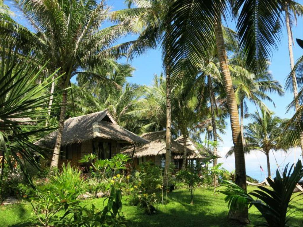 More about Camiguin Volcan Beach Eco Retreat and Dive Resort