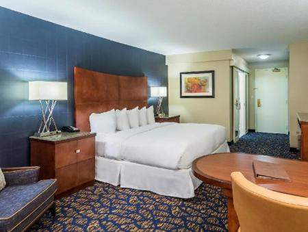 1 King Bed with Complimentary Wifi Doubletree By Hilton Downtown Nashville Hotel