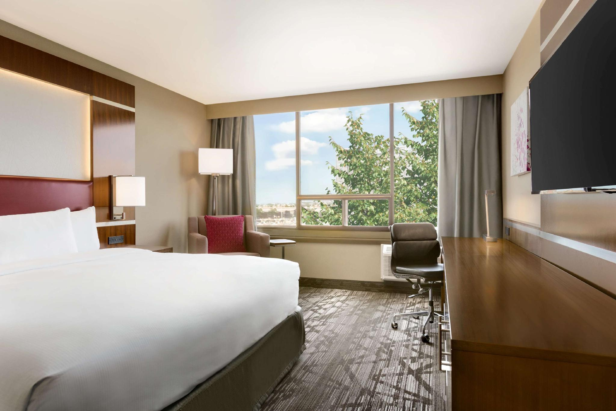 1 King Executive Room