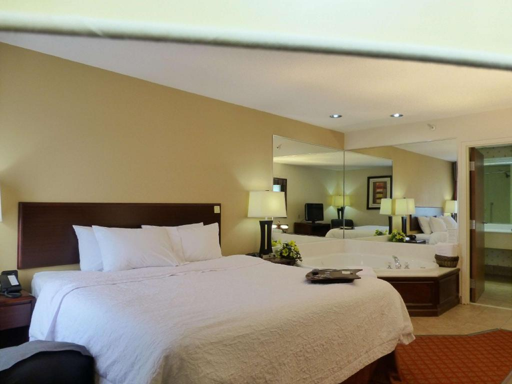 1 King Suite Whirlpool Non-Smoking - Guestroom