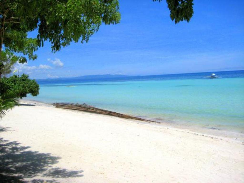 More about Panglao Grande Resort