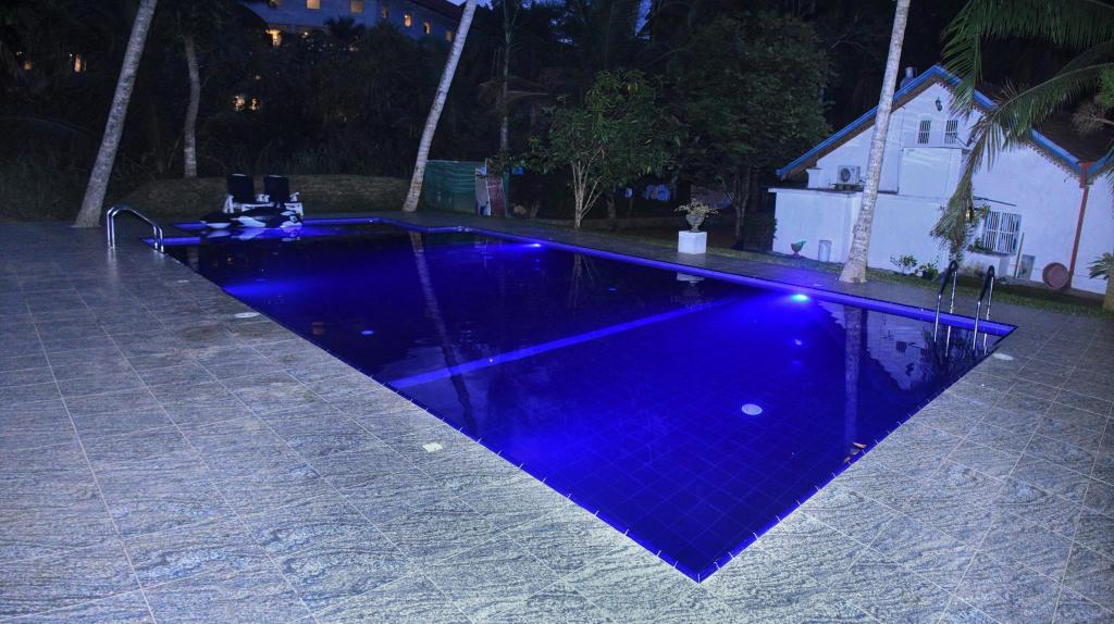 Swimming pool [outdoor] Villa Bird Nest