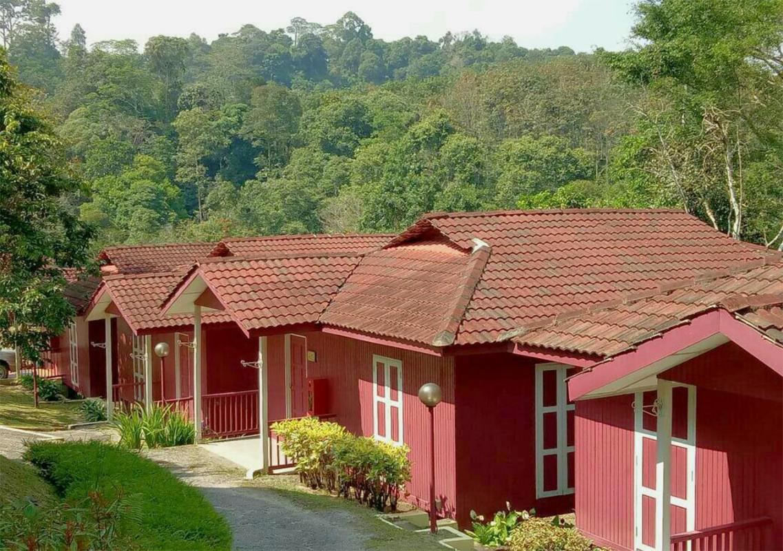 Serene Resort Training Centre Janda Baik Bentong Offers Free Cancellation 2021 Price Lists Reviews
