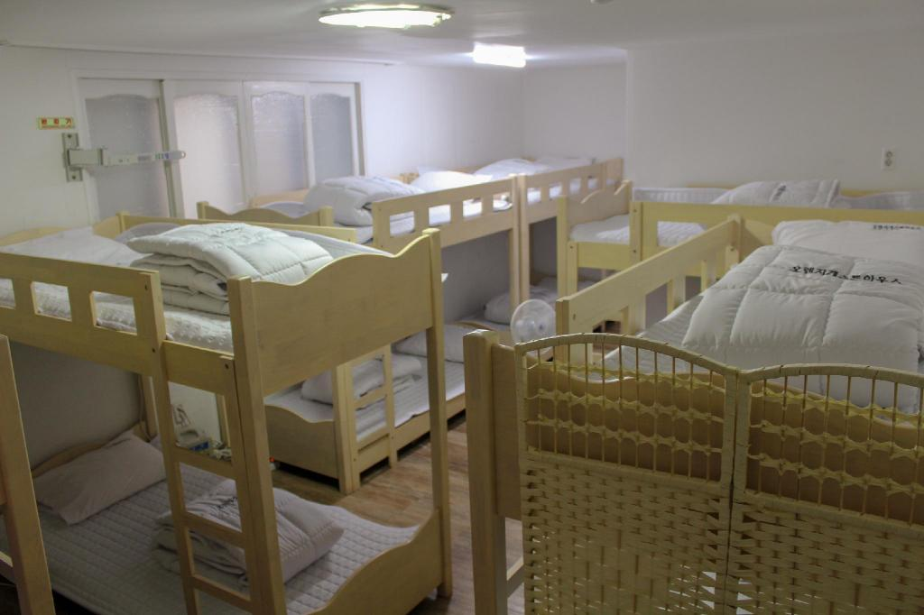1 Person in 10-Bed Dormitory - Female Only - View