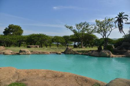 Swimming pool [outdoor] Tala Private Game Reserve Resort