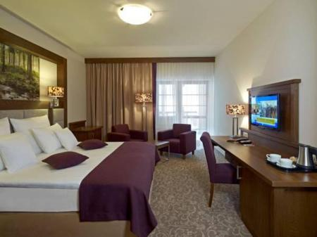Superior Room with 2 Connecting Zip Beds Hotel Mercure Krynica Zdroj Resort&Spa
