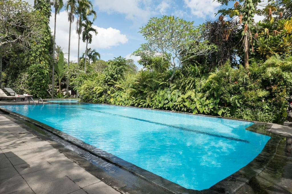 Swimming pool [outdoor] Ananda Cottage Hotel