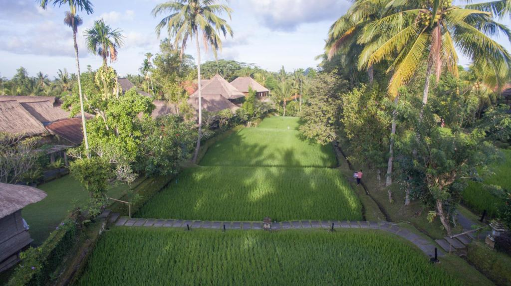 More about Ananda Ubud Resort