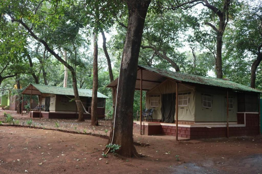 Dandeli Nature Homestay