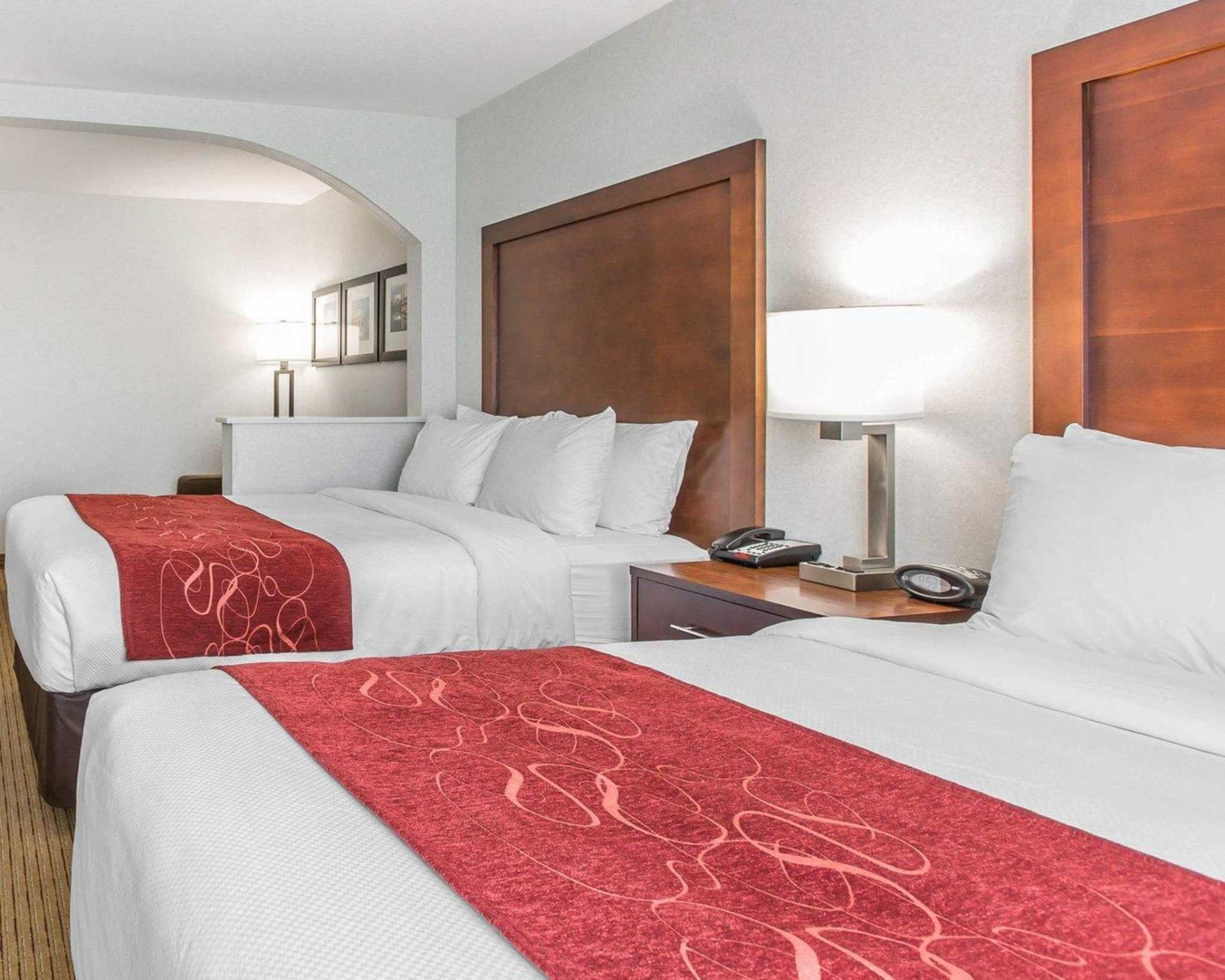 Suite con Cama de matrimonio (Suite Double Bed)