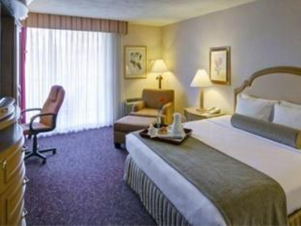 1 King Bed Deluxe Non-smoking Crowne Plaza Hotel Mission Valley