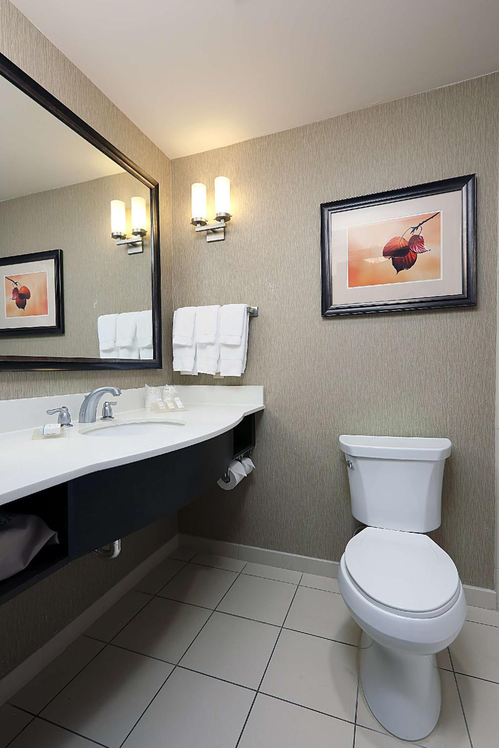1 King Accessible 1 Bedroom Suite Roll In Shower