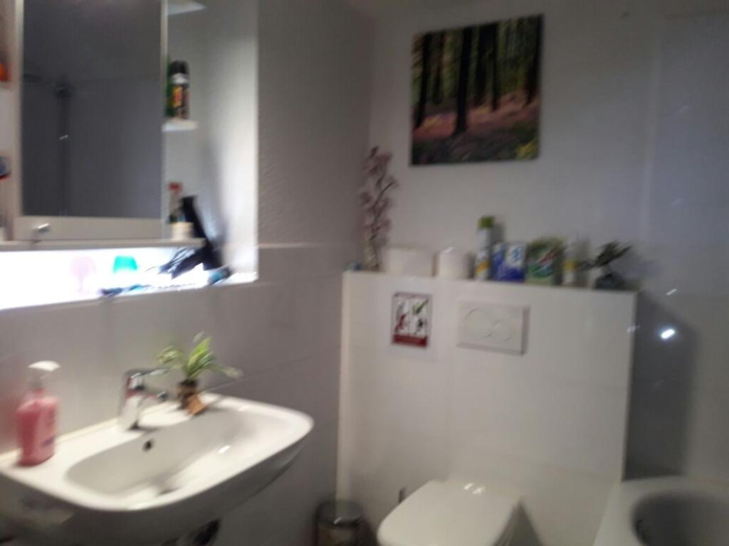 Das Apartment (22 m²), 1 Schlafzimmer und 1 eigene Badezimmer in ...