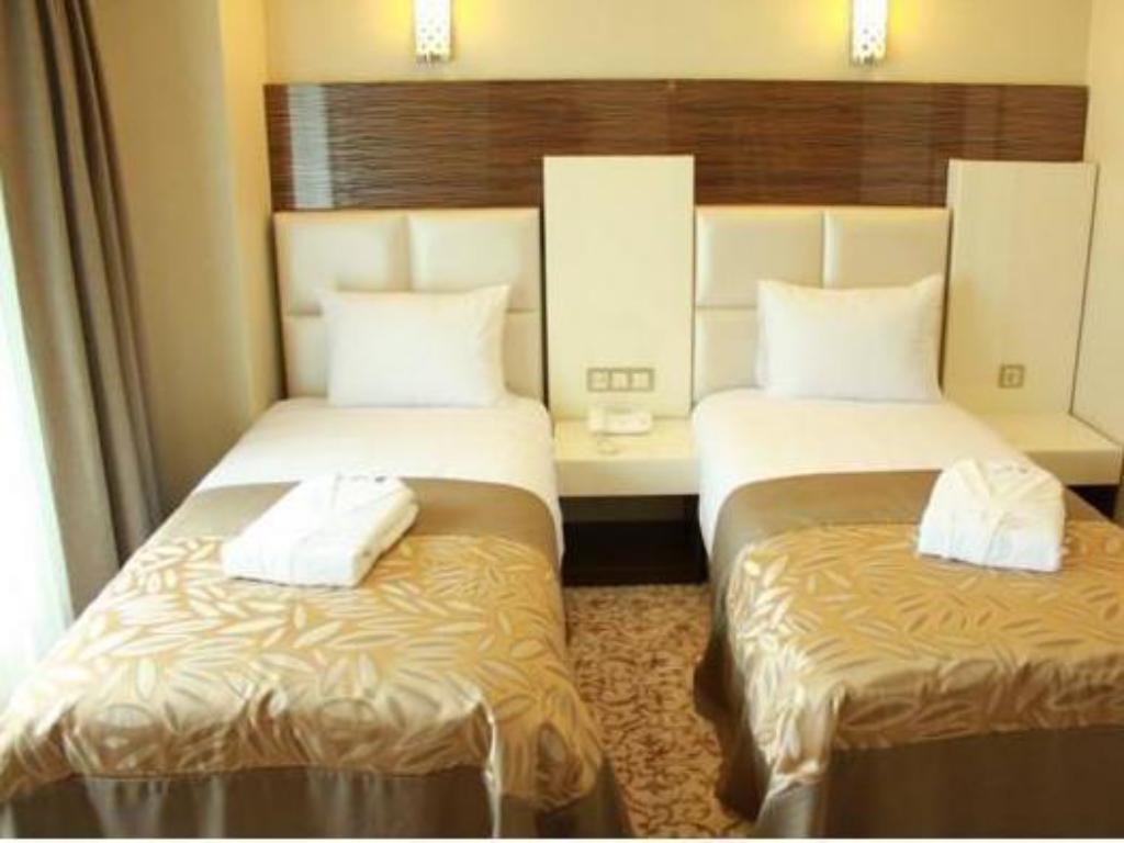Double or Twin Room Green Prusa Hotel