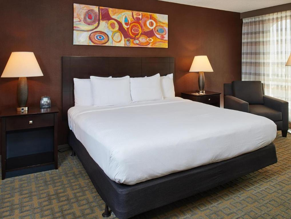 Room with King Bed and Roll-In Shower - Accessible, Non-Smoking - Katil Doubletree Hotel Dallas Market Center