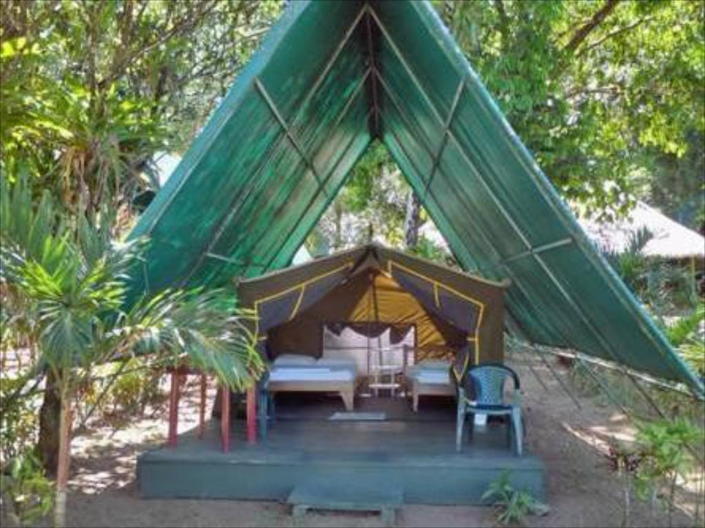 More about Corcovado Adventures Tent Camp