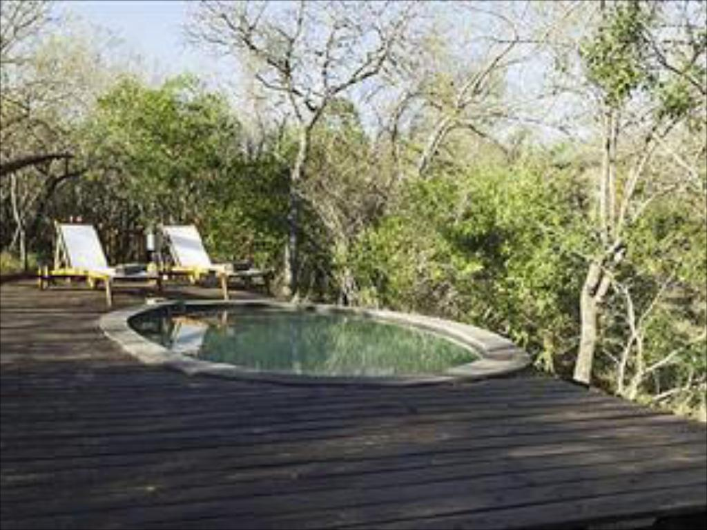 Swimming pool Ngama Tented Safari Lodge