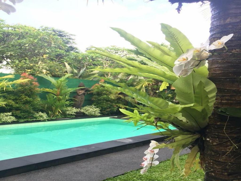 Secret Garden Guest House Bali, Indonézia - a legolcsóbban