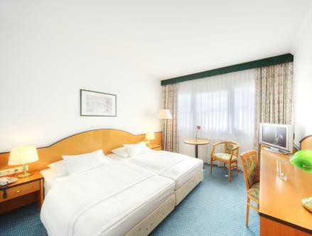 Comfort Double Room with Danube View