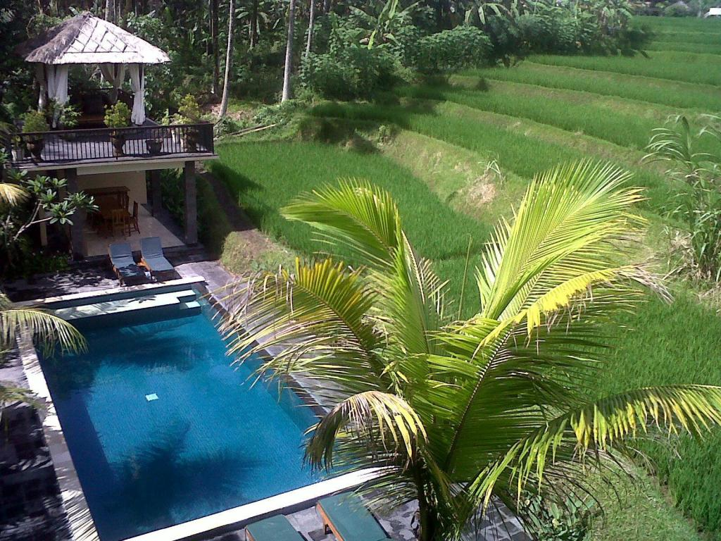 Swimming pool Biyukukung Suites & Spa