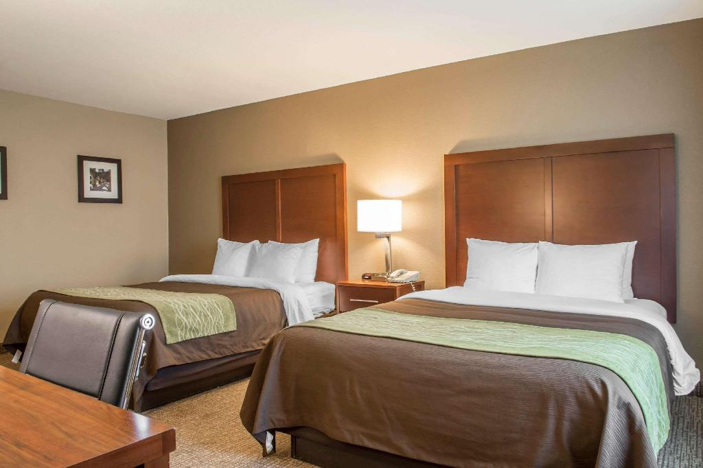 2 Queen Beds, Suite, Nonsmoking, Accessible - Suite room