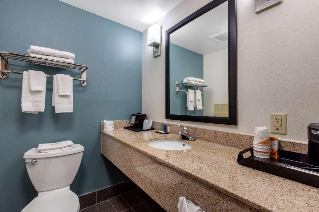 1 bedroom Suite - Suite room Sleep Inn & Suites Auburn Campus Area I-85