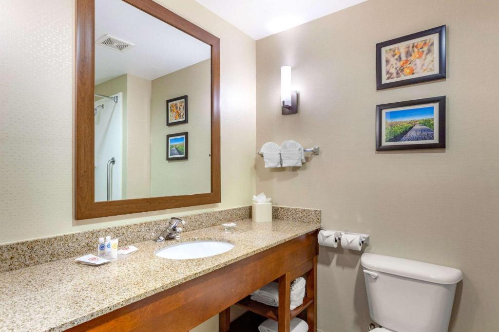 Comfort Suites Glendale State Farm Stadium Area Hotel Phoenix