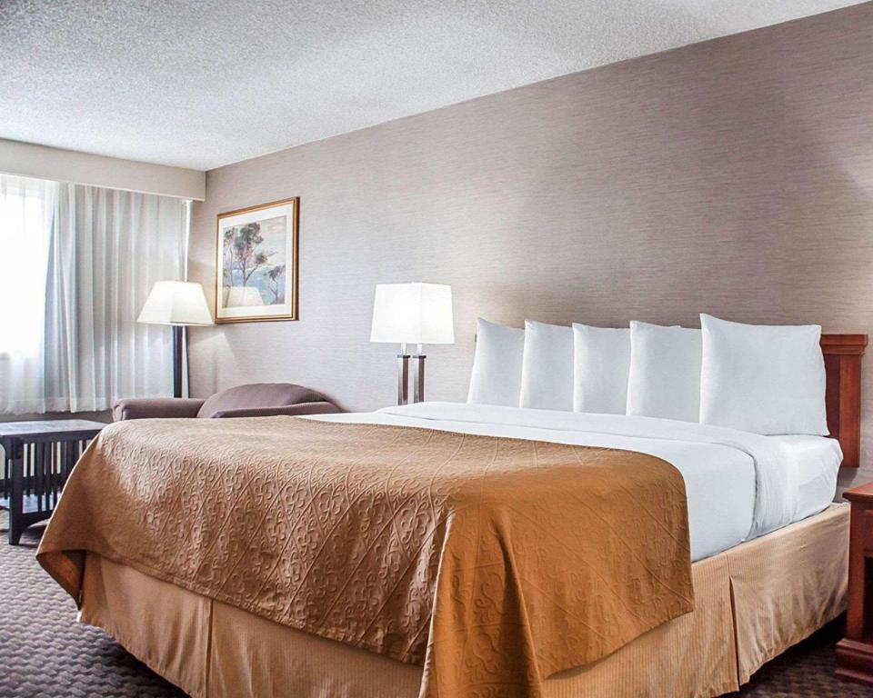 1 King Bed Nonsmoking - Guestroom Quality Inn & Suites Vestal Binghamton near University