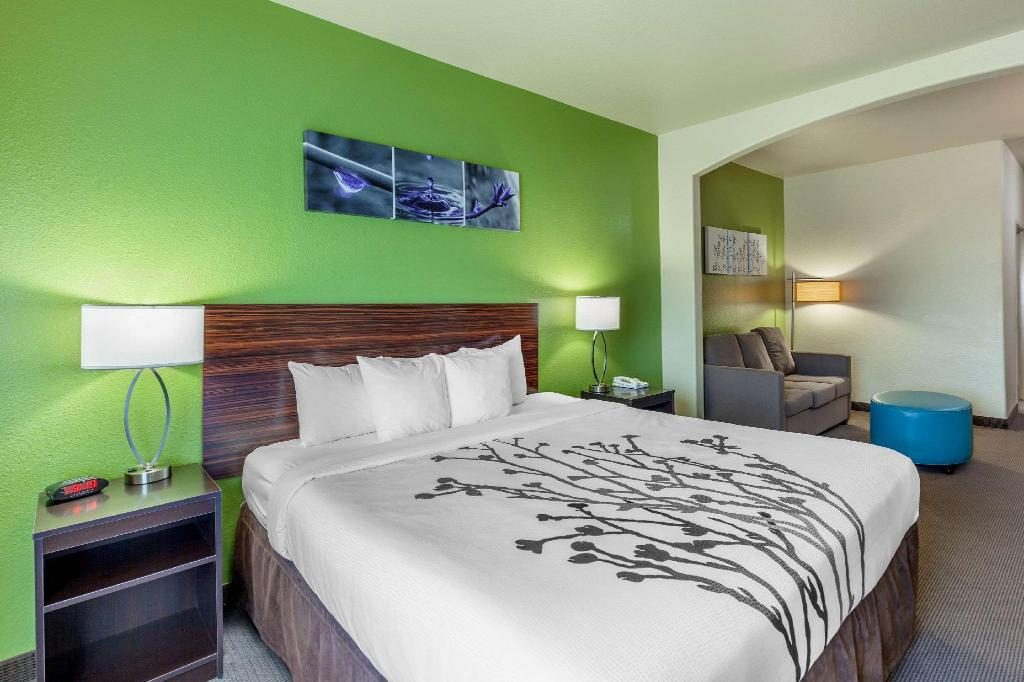 1 King Bed, Suite, Nonsmoking, Accessible - Guestroom