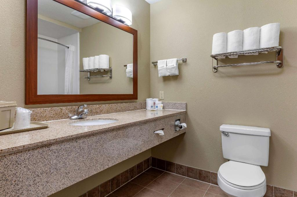 1 King Bed Suite Nonsmoking - Suite room Comfort Suites Waco Near University Area