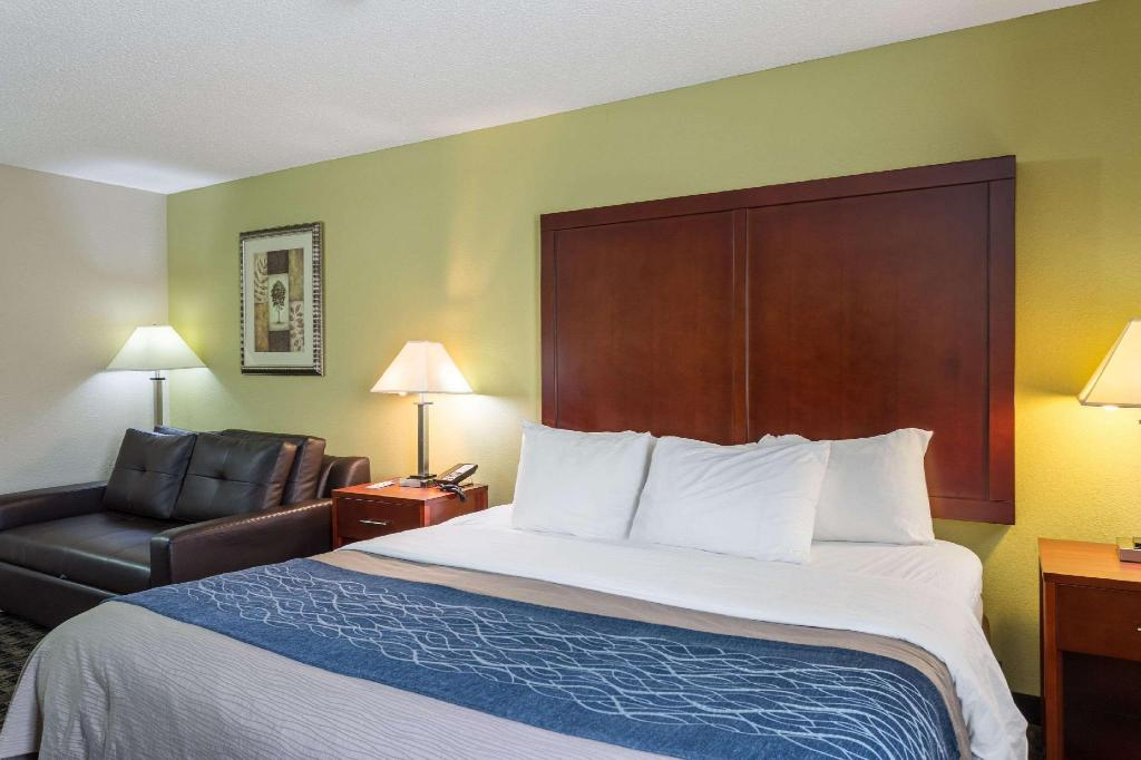 1 King Bed Nonsmoking Accessible - Guestroom