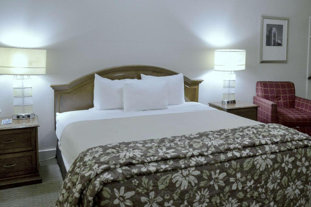 1 King Bed Non-Smoking - Guestroom Rodeway Inn & Suites