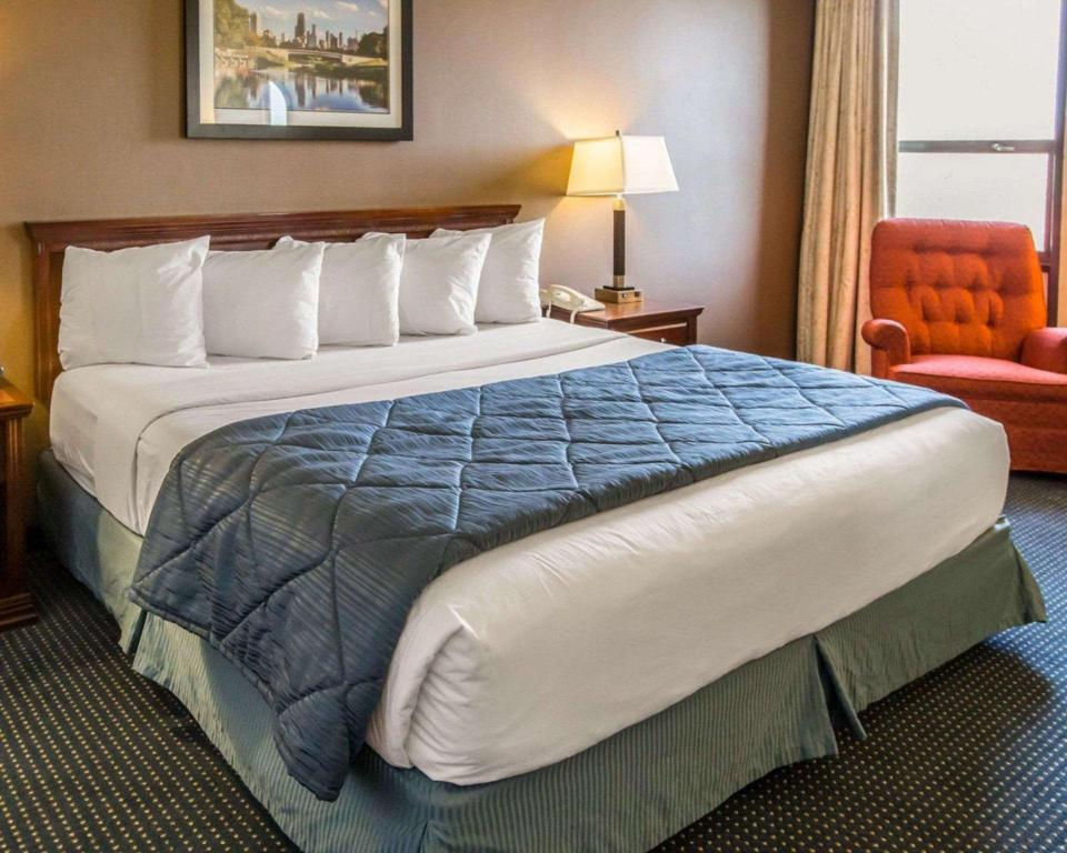 Standard with 1 King Bed - Guestroom Quality Inn Schaumburg - Chicago