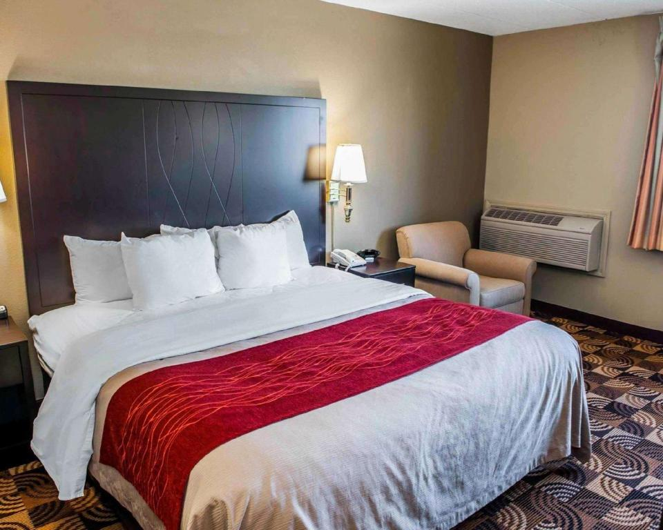 Standard Accessible King Bed - Guestroom Comfort Inn & Suites North At The Pyramids