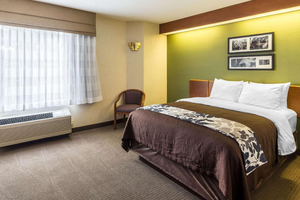 Sleep Inn & Suites Acme - Traverse City in Acme (MI) - Room
