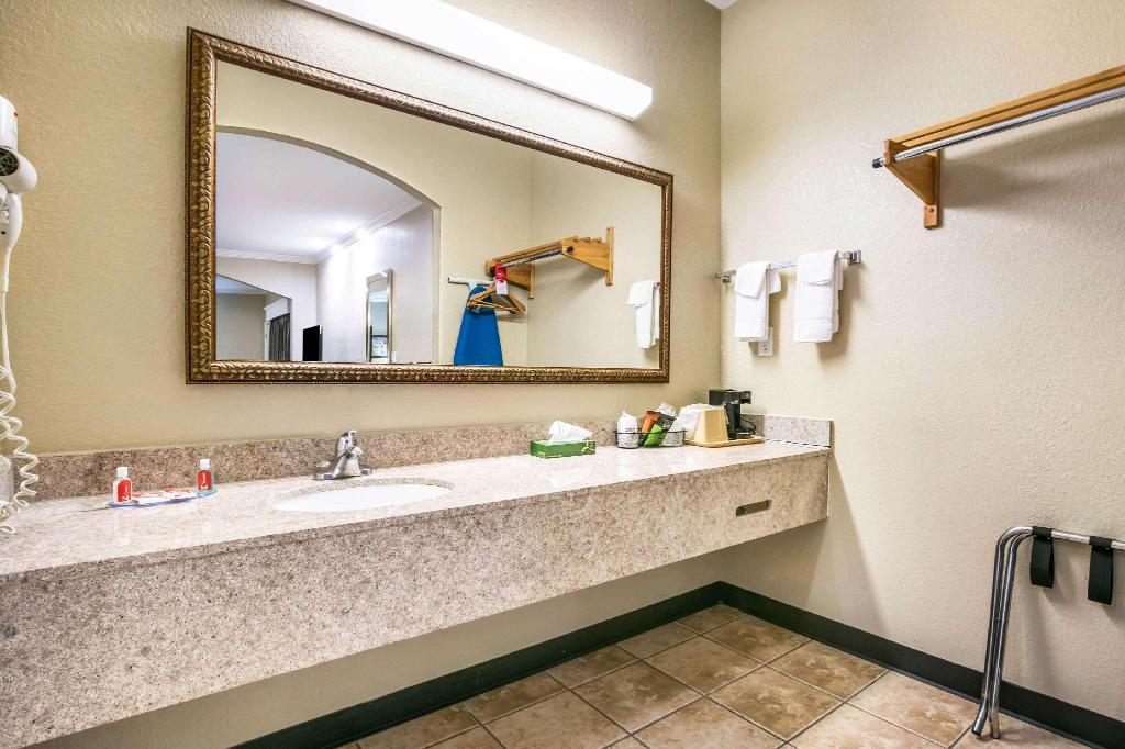 1 bedroom Suite - Suite room Econo Lodge Inn & Suites