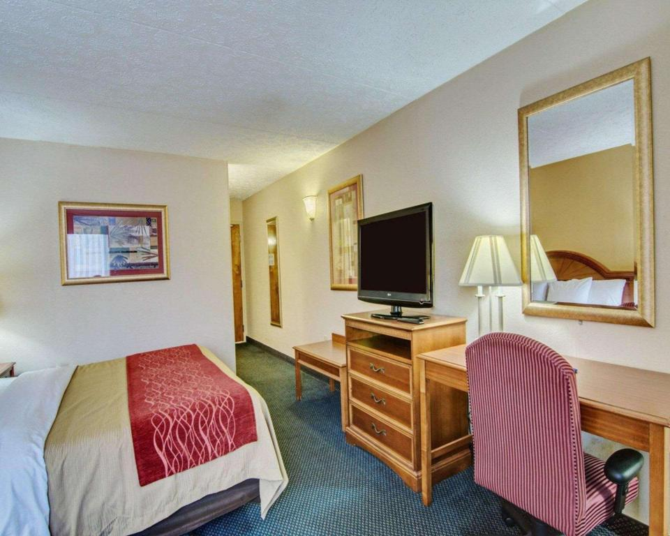 King bed Non-Smoking - Guestroom Comfort Inn near Martinsville Speedway