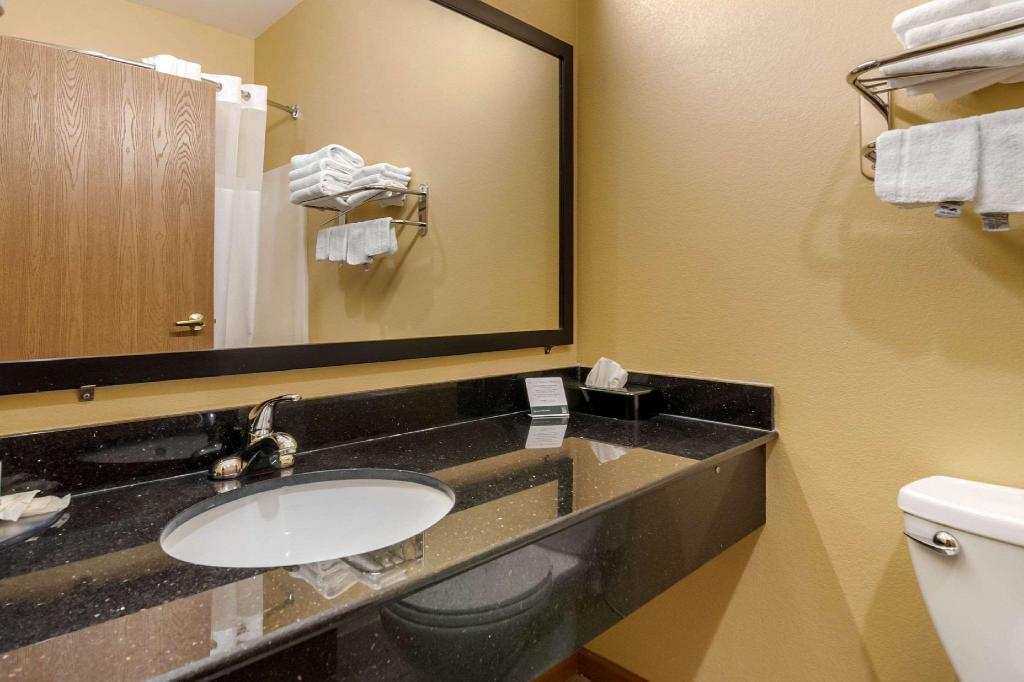 1 King Bed - Non - Smoking - Guestroom Quality Inn & Suites Lenexa Kansas City