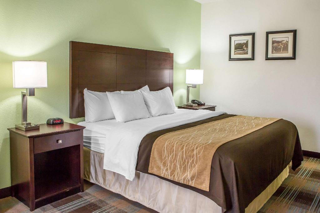 1 King Bed Nonsmoking - Guestroom Comfort Inn Lexington South