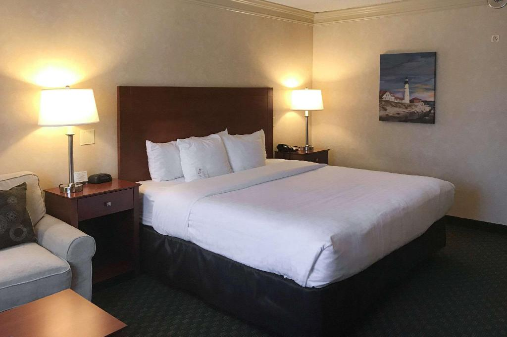 1 King Bed with Pool View - No Smoking - Guestroom Clarion Hotel & Conference Center