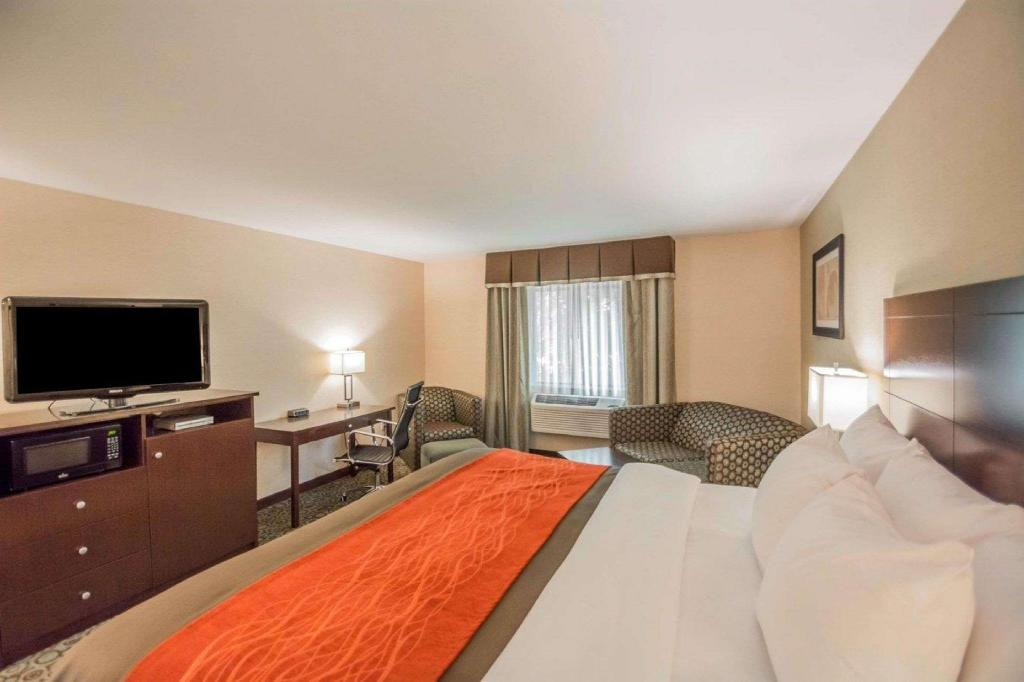 1 Queen Bed Non-smoking Accessible - Suite room