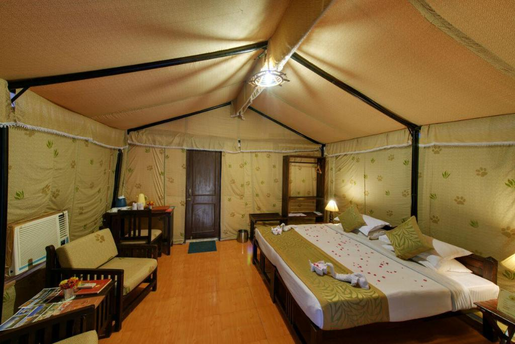 Lion Safari Camp