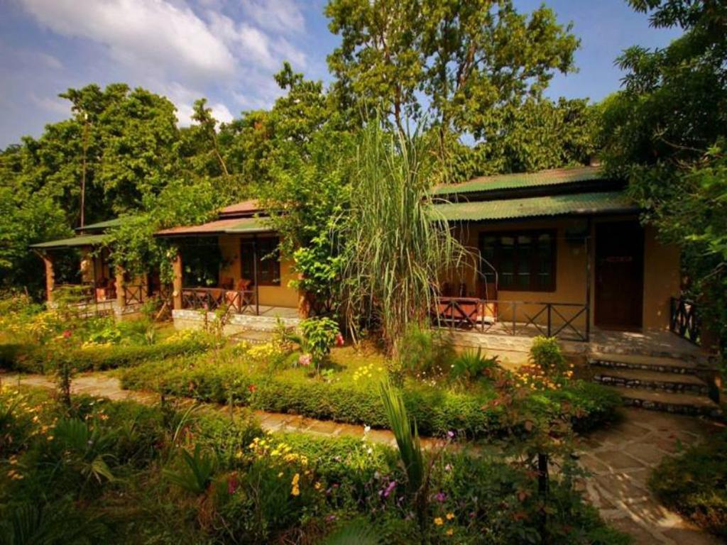 More about Chitwan Gaida Lodge