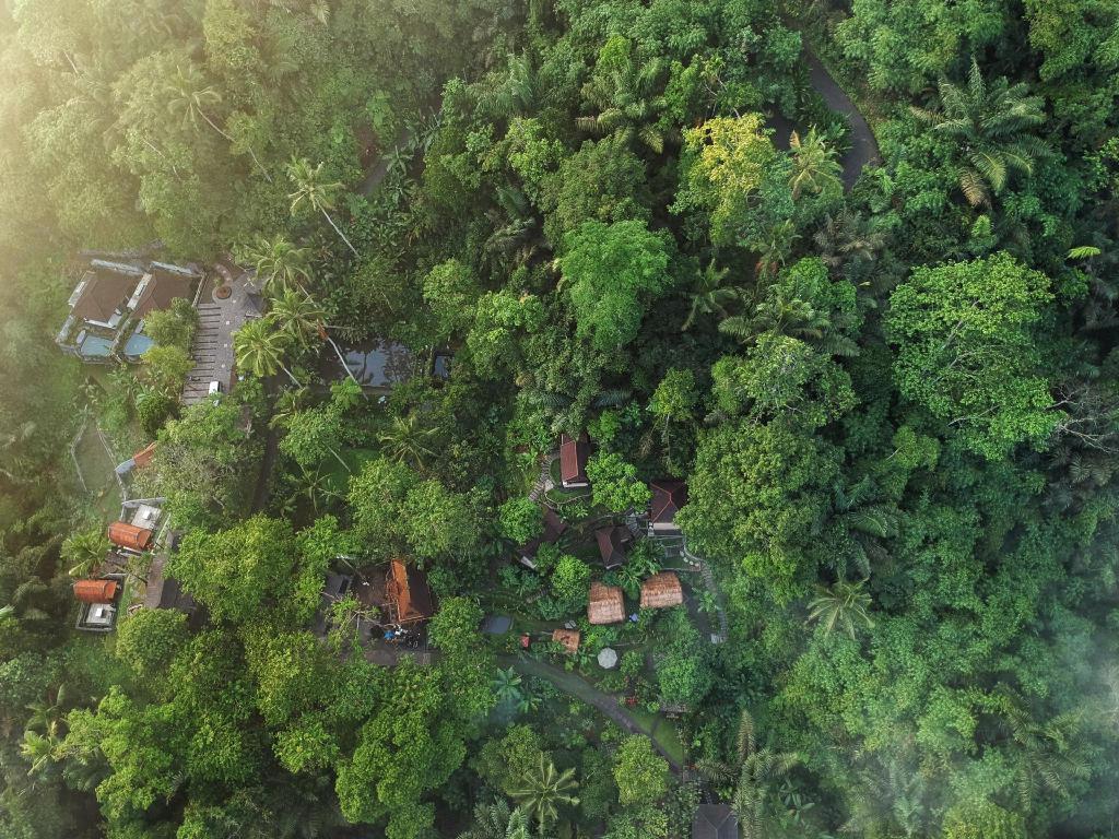 Bali Jungle Huts In Indonesia Room Deals Photos Reviews